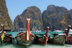 david thailandia